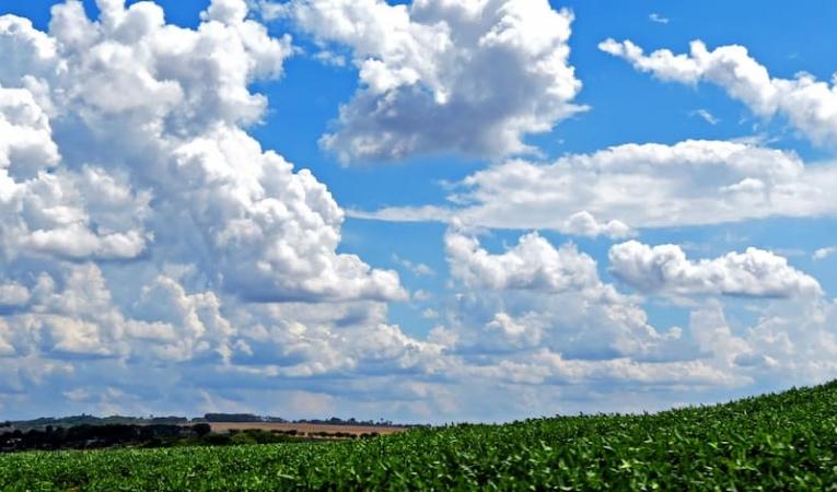 Armando las perspectivas del negocio agrícola 21/22